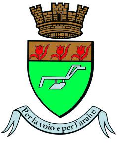 logo carqueirannequad